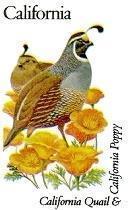 State Birds - California