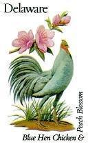 State Birds - Delaware