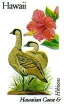 State Birds - Hawaii
