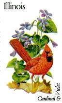 State Birds - Illinois