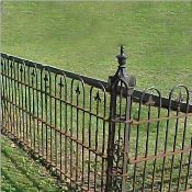 A beautiful wrought iron fence.
