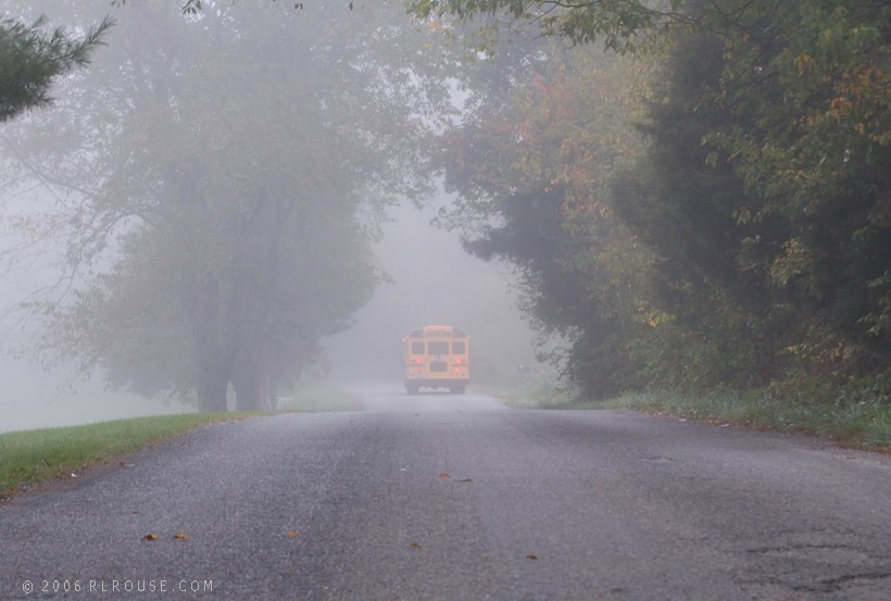 Going to school on a foggy morning