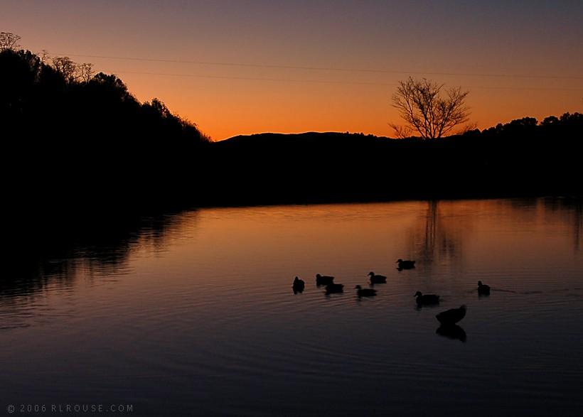 Shatley Springs